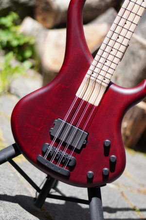 Body of the bass